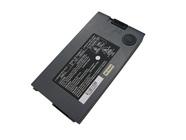 D520BAT-P,87-D528S-4D5,87-D5628S-4D5 batterie